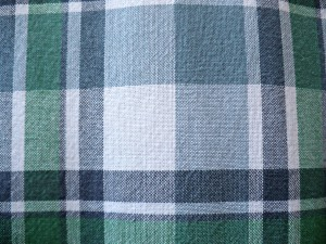 J.Crew Madras Blue upclose