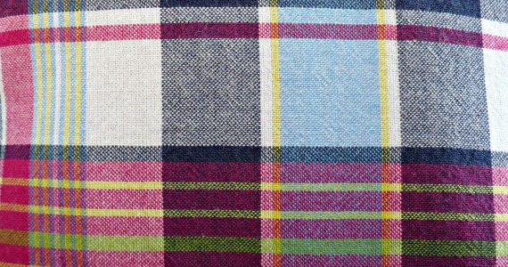 J.Crew Madras Close-up