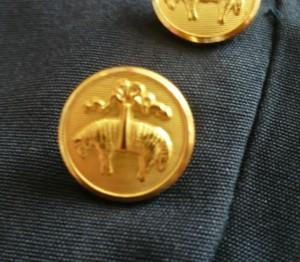 Blazer Buttons