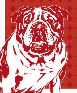J.Press Bull Dog