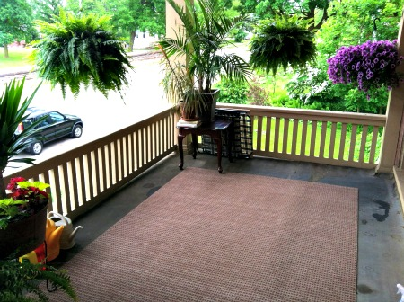 Porches And Plants
