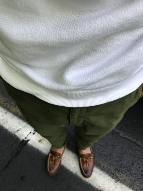 Olive Chinos & White Sweatshirt