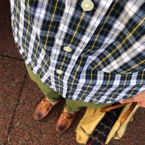 Olive Chinos and Tartan Shirt