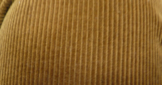 Corduroy Close-up